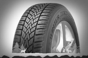 Dunlop-Winter-Response-2